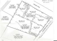 1 APPROVED BUILDINS LOT - WATERSTONE SUBDIVISION - LOT AT-2-A