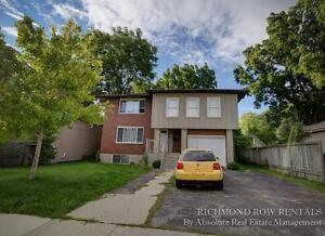 Renovated large 4/5 Bedroom house Old North 500$ inclusive London Ontario image 1