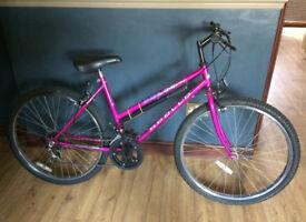 Ladies Apollo Pulse Shimano Bike & Bike Trainer