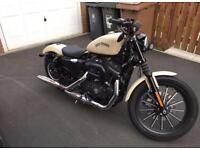 2014 Harley Davidson XL Iron 883 - Denim Sand Camo (Low Miles)