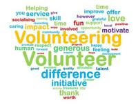 Volunteer Roles Available