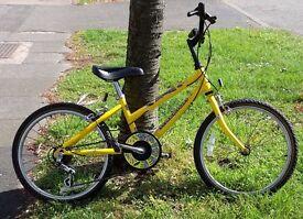 20 inch Raleigh Spicee unisex kids bike