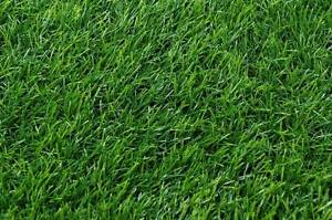 Artificial Grass - Perfect for Lawns only $14.50 psqm Osborne Park Stirling Area Preview