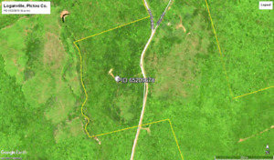 Woodland with road and river frontage for sale