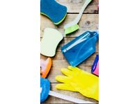 Private professional cleaning and ironing services