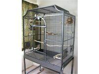 Wanted Montana Madeira 11 Bird Cage.