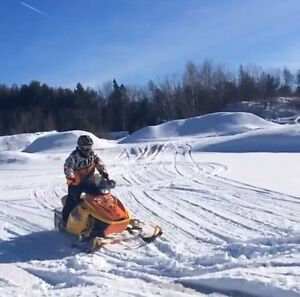 Ski doo mxz 600/800 Blair Morgan edition