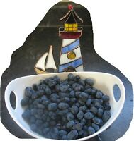 Haskap Berries 40 dollars all you can pick (one day) or $5 lb