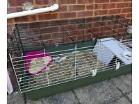Large plastic hutch for small pets. Rabbits, guinea pigs, hamsters, kittens, puppies