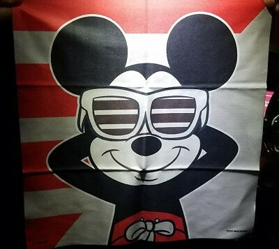 2018 Disney Mickey Mouse Ray-Ban Sunglasses cloth Limited Edition sunglass hut