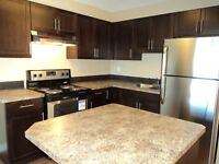Unfurnished 2 Bdrm Suite - 6727-59th Ave - Available November 1