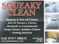 SQUEAKY CLEAN- Domestic and Commercial Cleaning Services