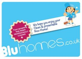 Professional Carpet Cleaning with Real Steam Cleaning