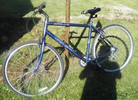 Nice Used Ladies/Mens Apollo CX10 Urban bike in metallic blue colour