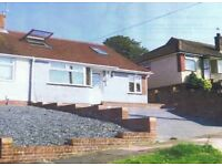 Lovely 5 bed student house in Hollingbury Brighton