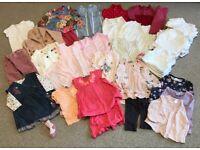 9-12 months girls clothing bundle