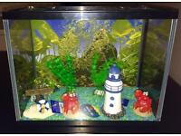 Nice little fish tank bought but never used filled with new ornaments, gravel and a new water filter
