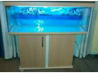 Fish tank cold / tropical fishes with cabinet and accessories