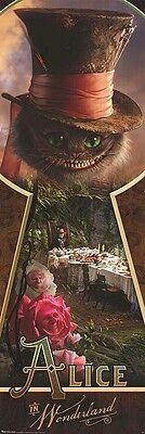 Mad Hatter Movie (ALICE IN WONDERLAND ~ MAD HATTER ~ 21x62 MOVIE DOOR POSTER~ Cheshire Cat)