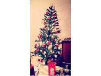 FREE Christmas tree and lights