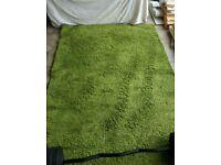 Green ikea rug