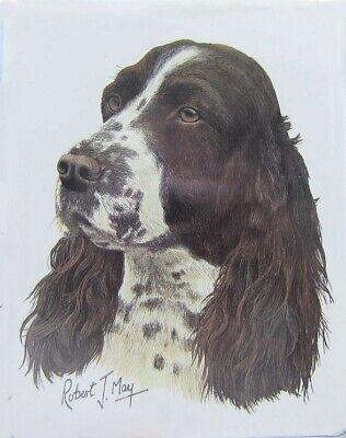 Retired Dog Breed SPRINGER SPANIEL Vinyl Softcover Address Book by Robert May Dog Breeds Springer Spaniel