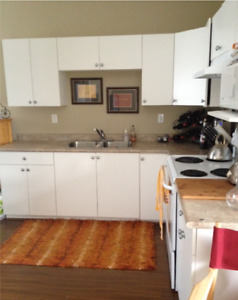 One 1 bedroom Coach apartment suite - WIFI, TV, LAUNDRY, HYDRO!