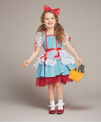 Girls Size 4 The Wizard of Oz Dorothy Glitter Dress Costume Chasing Fireflies