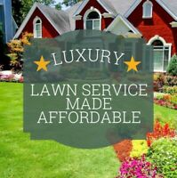 LAWN CARE / SPRING CLEAN-UPS!! BOOK NOW!
