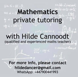 experienced mathematics tutor for online classes - £15/hour