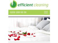 Domestic Cleaner - part and full time .