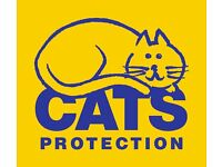 New Cats Protection Charity Shop in Edinburgh Requires Volunteers