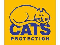 Volunteers Needed for Lovely Cats Protection Shop
