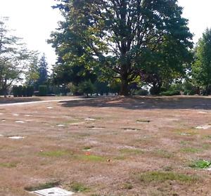 Valley View Memorial Gardens Single Plot