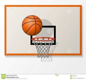 WANTED: Basketball back board and net