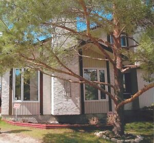 Waverley Heights 3 Bed / 1 Bath Available Immediately!!!