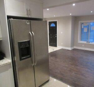 beautifully brand new renovated modern 3 bedroom plus garage