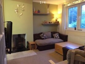 Sunny modern 2 bed semi-detached house (with large garden)