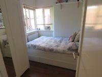 Lovely double room in flatshare near Willesden Green station