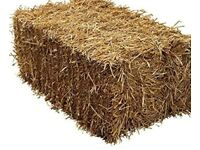 Hay bales - delivery available