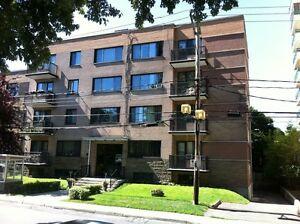 5304 Macdonald Ave. Newly-Renov.3 & 4 1/2 Apts. ($795.~ $1125.)