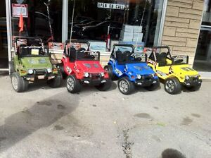 Mobility Electric Tricycles Range  70 Km + Lay Aways Storage Cornwall Ontario image 2