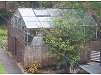 Galvanised Greenhouse 10ft 2ins x 8ft 6ins good condition.