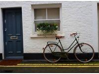 UNIQUE, beautiful vintage DUTCH ladies bike.