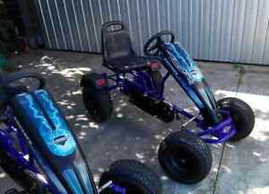 Pedal Karts Pedal Go Cart, Pedal Bike South Brighton Holdfast Bay Preview