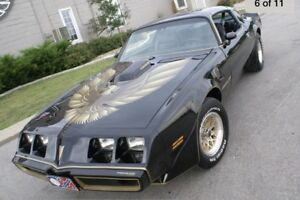 Looking for 77-81 trans am