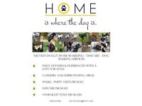Doggy Day Care / Home Boarding / Dog Walks