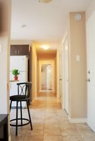 Luxury Modern Style APT everything included 5 min to U de M-54
