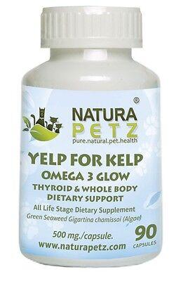 Yelp For Kelp   Omega 3 Thyroid   Whole Body Multi Mineral  Multi Vitamin   Dent