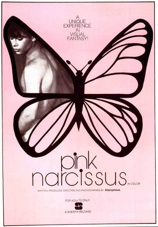 PINK NARCISSUS Movie POSTER 27x40 Don Brooks Bobby Kendall